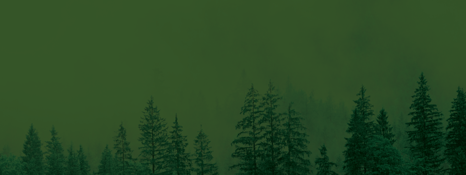 background image of trees