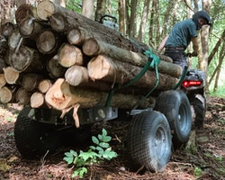 Multilander™ Logging Trailer Image 15