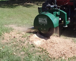 WG24 Stump Grinder Image 8